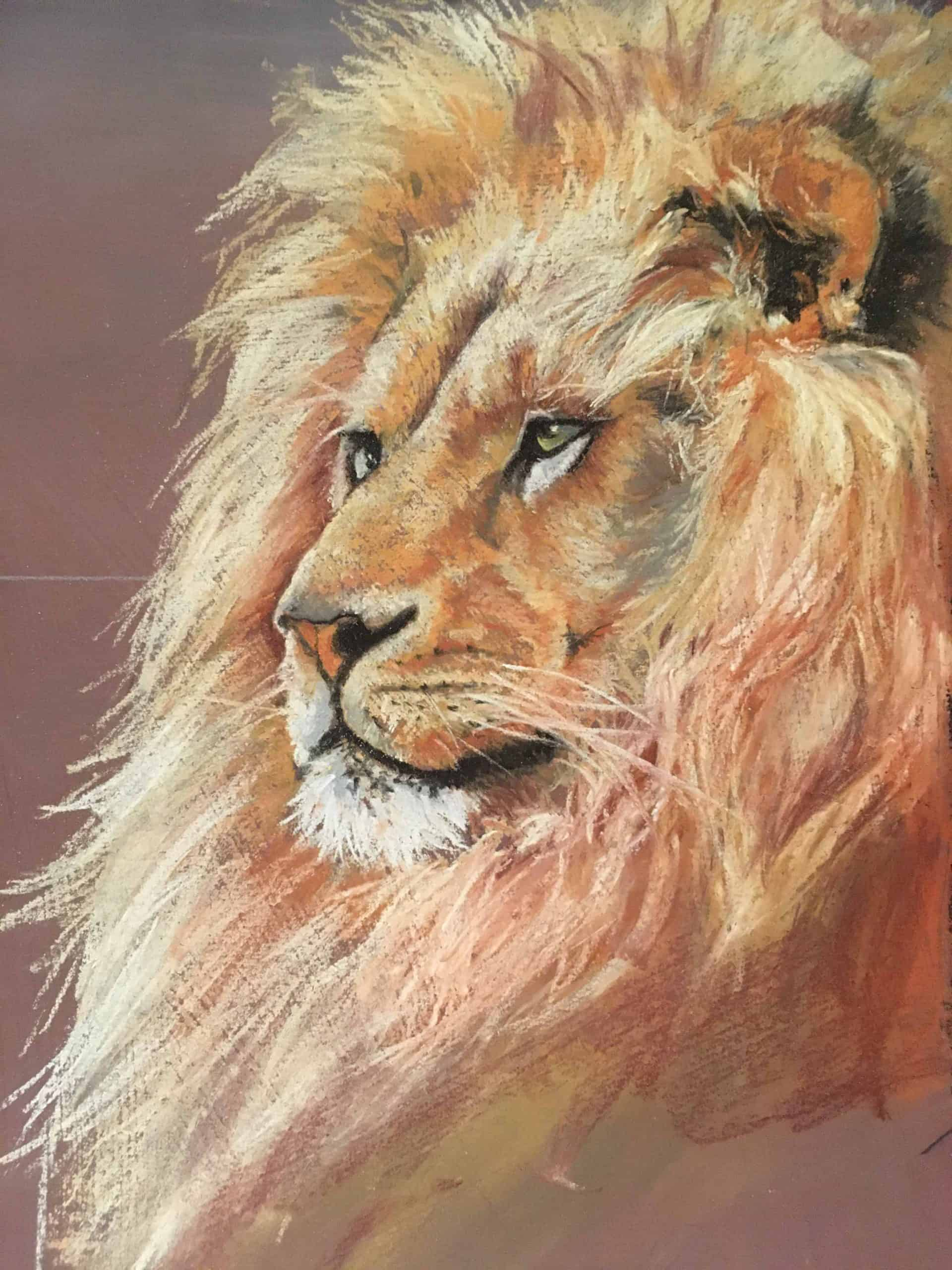 Lion sketch small