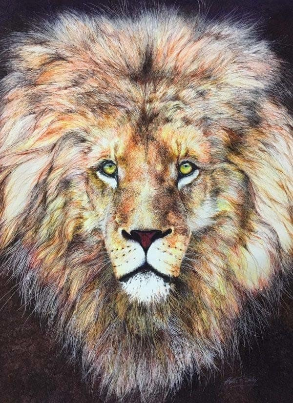 lion painted in colored pens